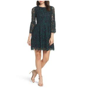 Eliza J | Lace Fit and Flare Dress